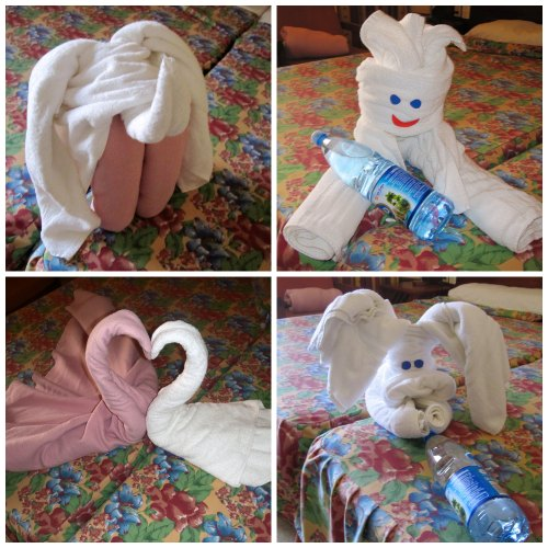 towel-animals